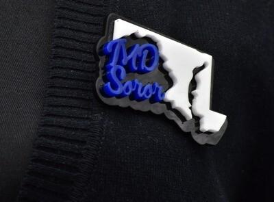 State Soror-Lapel Pin