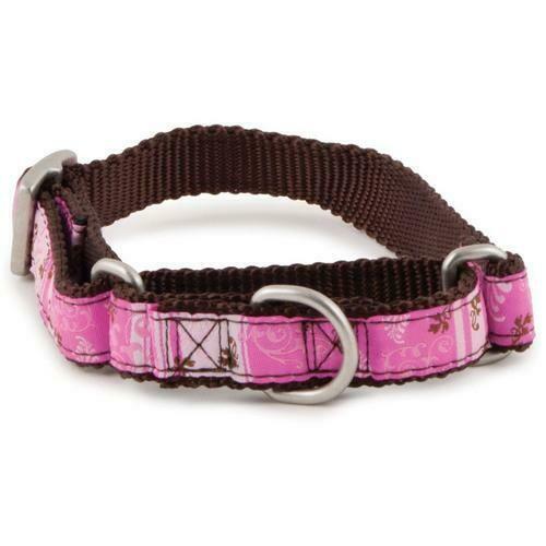 PetSafe Fido Finery Martingale Style Collar (1/2 Petite, Marvel)