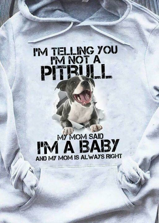I'm telling you im not a pitbull my mom said im a baby and my mom is always right ripped shirt