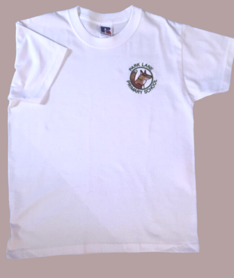 School Sports / PE Shirt OUT OF STOCK SIZE 9/10 & 11/12