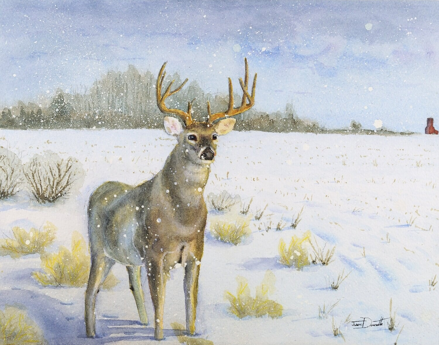 Unseen Visitor, Whitetail Deer