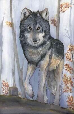 Woodland Encounter, Grey Wolf