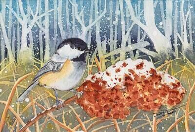 Marshland Chickadee