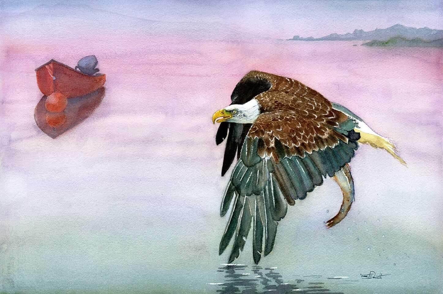 East Coast Eagle, Bald Eagle