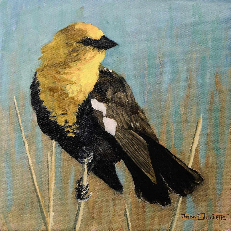 Mechanical Sun, Yellow Headed Black Bird