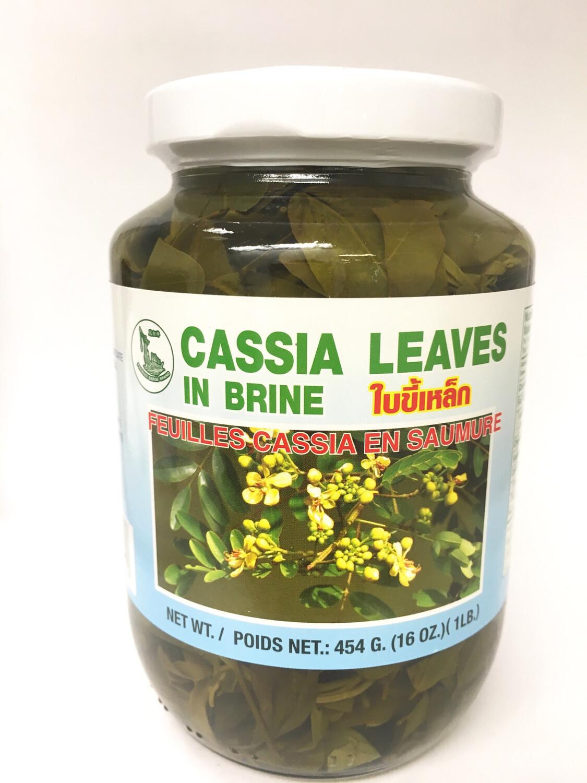 PHOENIX CASSIA LEAVES IN BRINE 24X454G