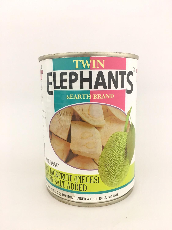 TWIN ELEPHANTS YOUNG JACKFRUIT 24X540G