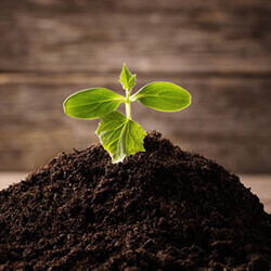 HermetiaPro Soil Supplement