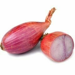 SHALLOTS RED