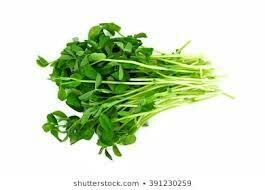PEA SHOOTS 100G PACK