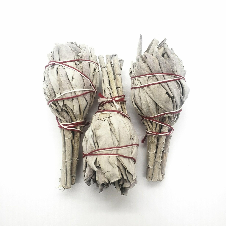 "Set of 3 4"" White Sage Smudge Sticks"