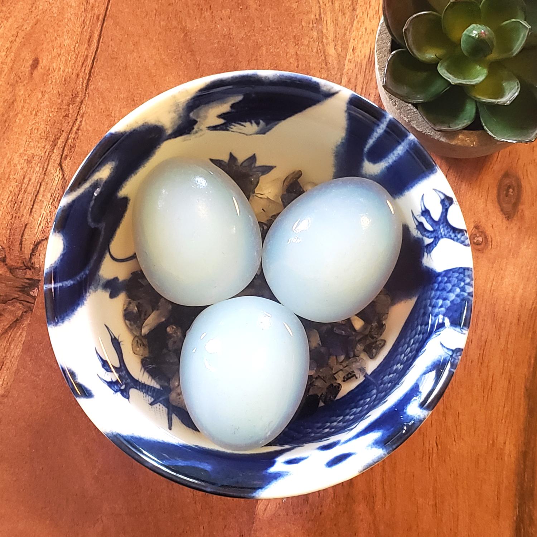 Blue Dragon Egg Protection Bowl