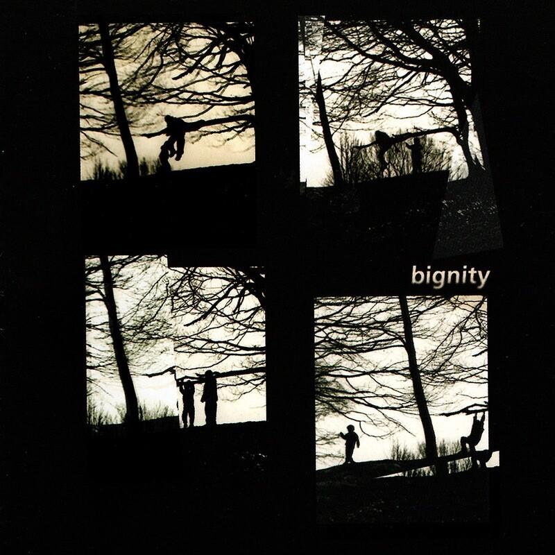 CD: Van Der Want / Letcher - Bignity