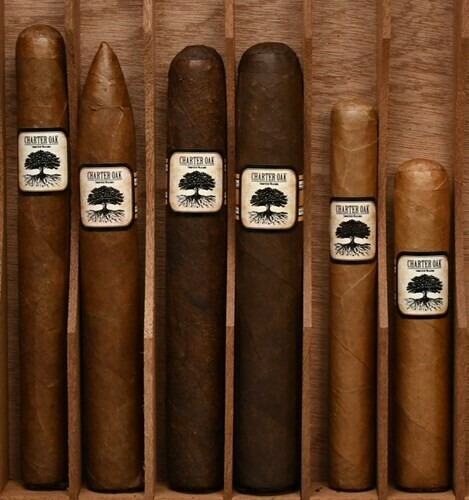 Foundation Cigars - Charter Oak Connecticut Shade - Rothschilde (5x50)