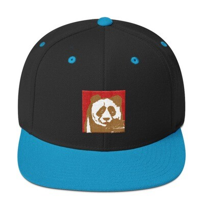 Snapback Hat by Eric Ginsburg