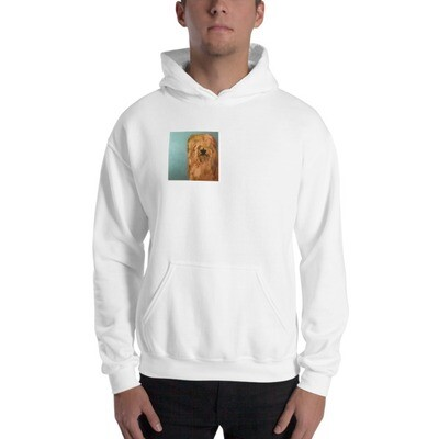 Hooded Sweatshirt by Eric Ginsburg