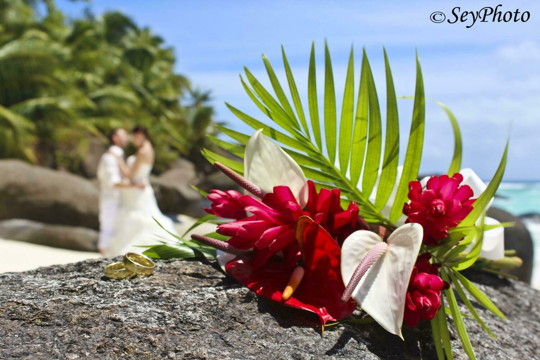 "MAHE Fotoshooting/ Hochzeits-Shooting ""Frangipani"" 6h ,Paolo Bordoni, PREIS: 660€, Anzahlung:"