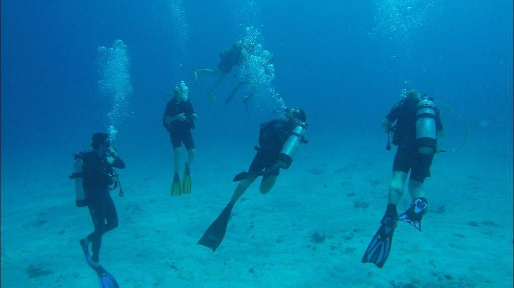 LA DIGUE: Tauchen 1/2 Tag  - 2 Tauchgänge möglich Preis pro Tauchgang, Trek Divers, PREIS: 65€, Anzahlung: