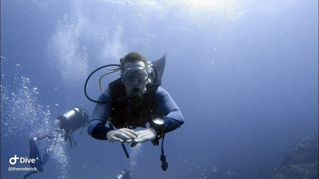 """LA DIGUE: Tauchen , Anfänger-Tauchgang """"Discover Scuba Diving/Bubble Maker"""" , Trek Drivers, PREIS: 90€, Anzahlung:"""
