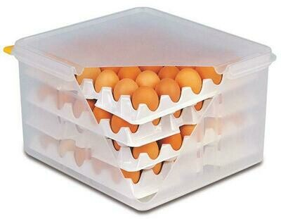 APS - scatola per uova