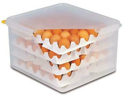APS -  scatola per uova 10 vassoi