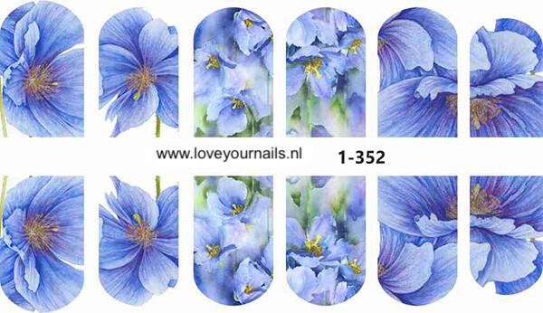 Blauwe bloemen 1-352w