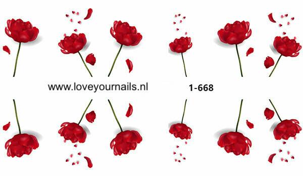 Rode bloemen 1-668