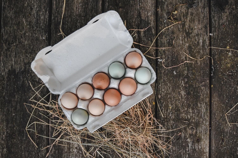 1-Monatsabo 10er Eier
