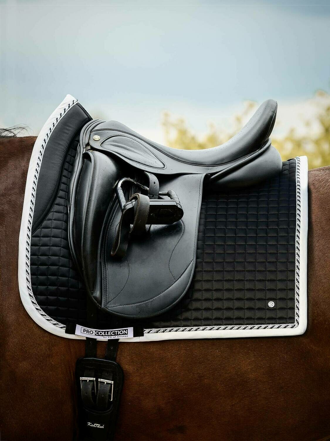 Dressage Saddle Pad, Black Pro