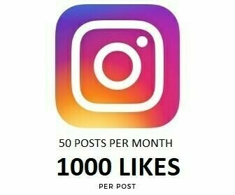 1000 Instagram Likes on Each Post Per month