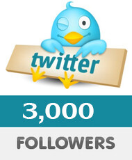3000 Twitter Followers