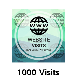 1000 Website Visits