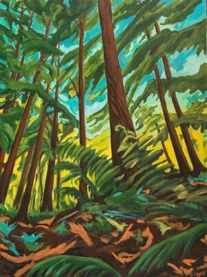 Lynn Valley Forest 2