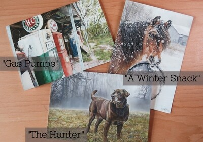 Single Greeting Cards (Free Shipping)
