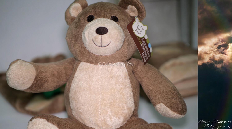 Celebrating You Lavender Aromatherapy Benji Bear