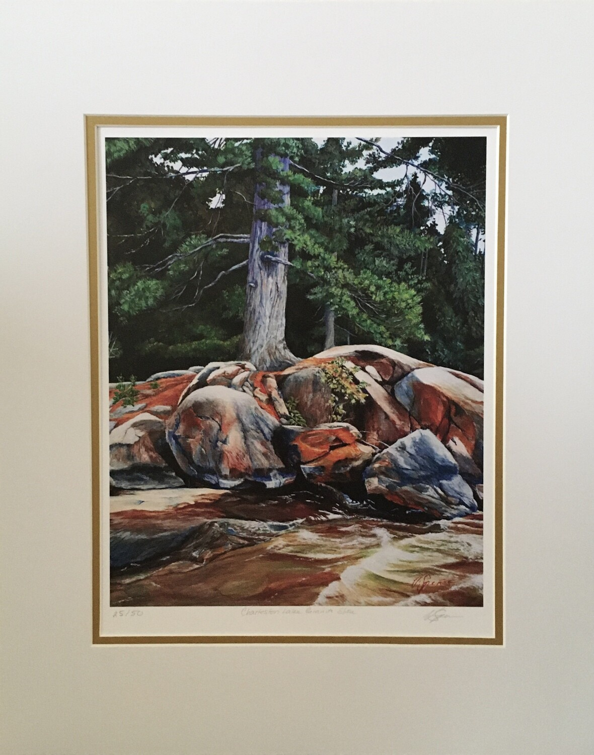 Lone Pine on Granite Shore, Print Matted & Signed