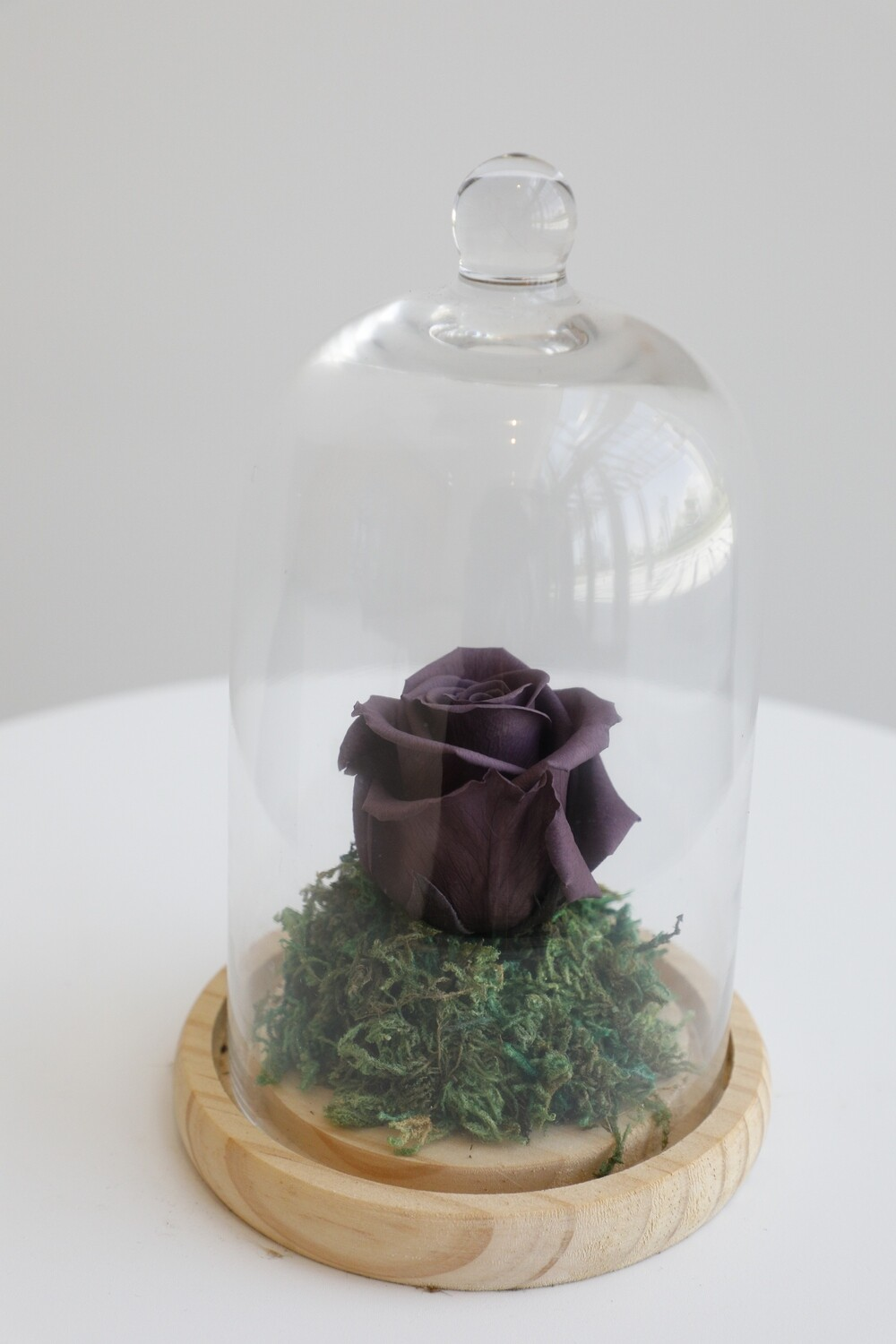 Infinity Rose Purple