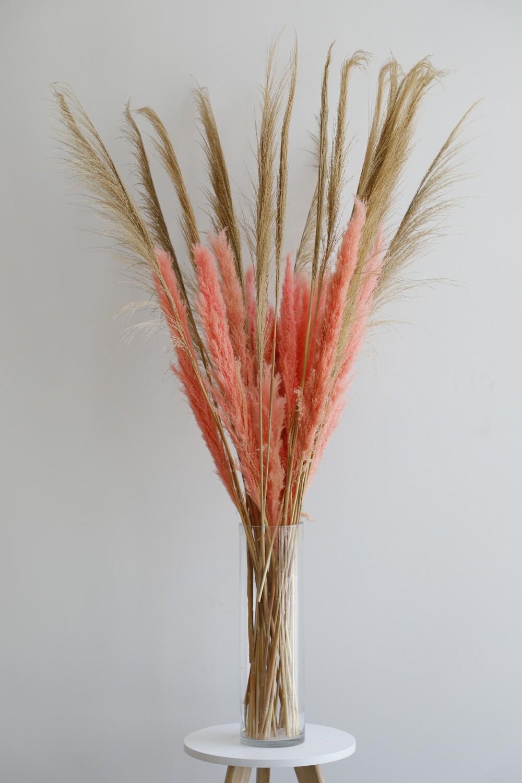 Dry Flowers With GLass Vase (115cm-155cm)