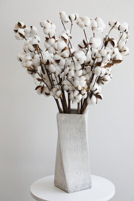 Dry Cotton Flower With Marble Vase