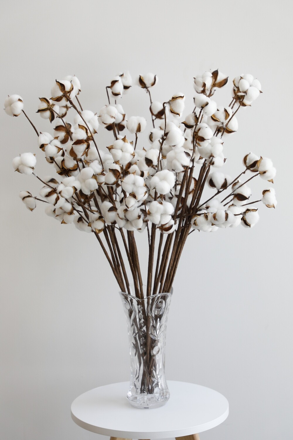 Dry Cotton Flowers With Glass Vase