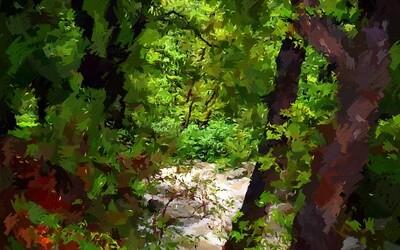 Река в весеннем лесу