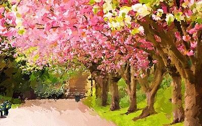 Аллея цветущих деревьев