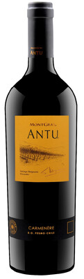 Antu Carmenere Mountain Vineyard of Colchagua Valley