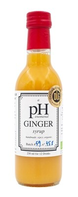 Ginger Sirup Bio pHenomenal