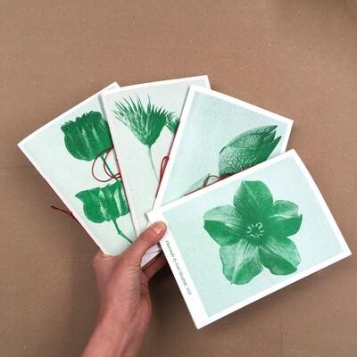 Серия блокнотов Plantstudie