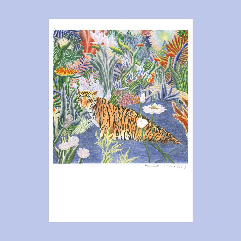 Постер «Тигр в траве»