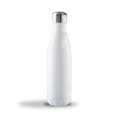 17oz Stainless Steel Bottle