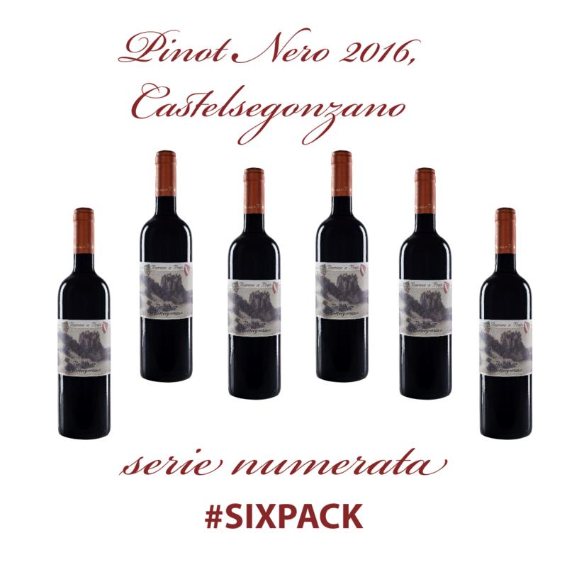 Pinot Nero 2016, Castelsegonzano #SIXPACK