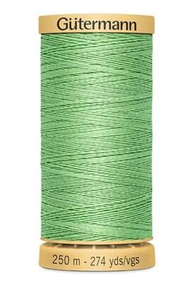 Gutermann Natural Cotton Thread 250m - 7880