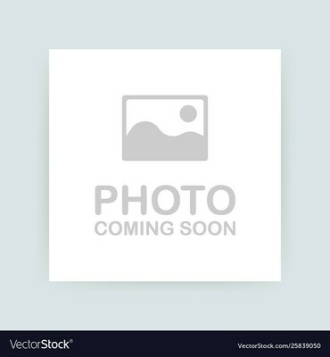 DMC107 Broder #25 Cotton 0562 - Medium Jade